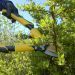 Stanley 36814 Stanley 36814 Pruning Combo Pack_Alt_Image_3