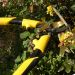 Stanley 36814 Stanley 36814 Pruning Combo Pack_Alt_Image_5